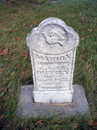 BUSSEY, MARION - Bremer County, Iowa | MARION BUSSEY