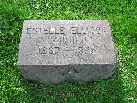 ELLISON CARRIER, ESTELLE - Bremer County, Iowa | ESTELLE ELLISON CARRIER