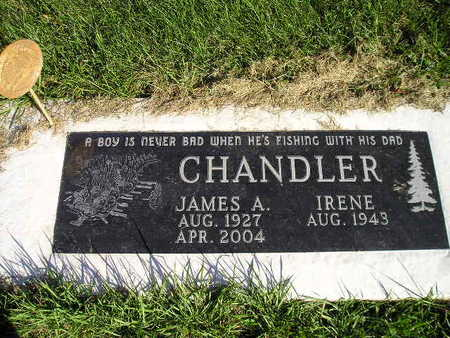 CHANDLER, IRENE - Bremer County, Iowa | IRENE CHANDLER