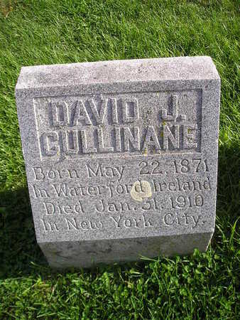 CULLINANE, DAVID J - Bremer County, Iowa | DAVID J CULLINANE