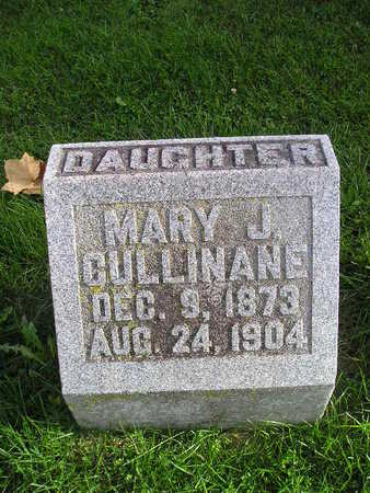 CULLINANE, MARY J - Bremer County, Iowa | MARY J CULLINANE