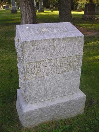 DAVIS, JOHN W - Bremer County, Iowa | JOHN W DAVIS
