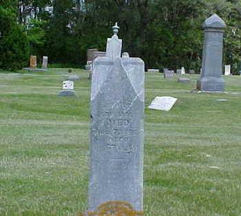 EDWARDS, JOHN JAMES - Bremer County, Iowa   JOHN JAMES EDWARDS