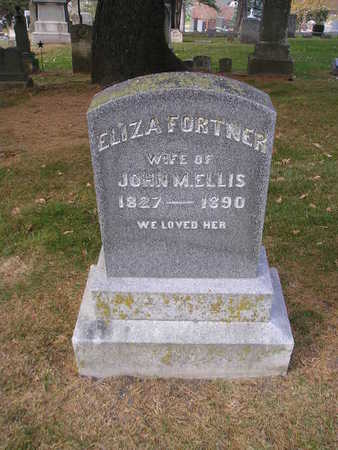 ELLIS, ELIZA - Bremer County, Iowa | ELIZA ELLIS
