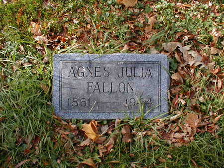 FALLON, AGNES JULIA - Bremer County, Iowa | AGNES JULIA FALLON