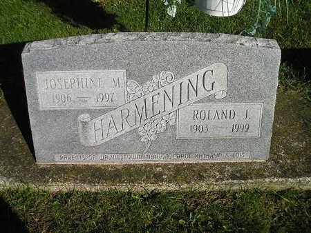 HARMENING, JOSEPHINE M - Bremer County, Iowa | JOSEPHINE M HARMENING