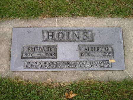 HOINS, ALBERT G - Bremer County, Iowa | ALBERT G HOINS
