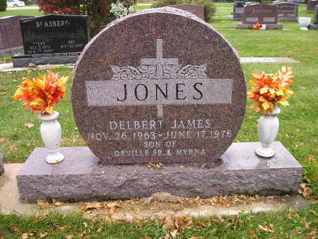 JONES, DELBERT JAMES - Bremer County, Iowa | DELBERT JAMES JONES