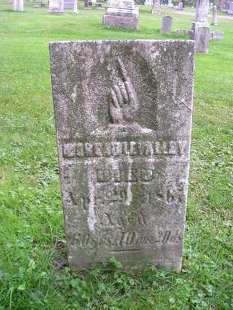 LEVALLEY, MOREHEAD - Bremer County, Iowa   MOREHEAD LEVALLEY