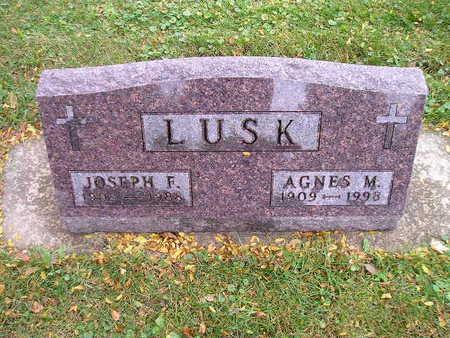 LUSK, AGNES M - Bremer County, Iowa | AGNES M LUSK