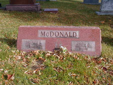 MCDONALD, BRIDGET E - Bremer County, Iowa | BRIDGET E MCDONALD