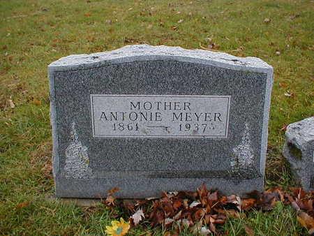 MEYER, ANTONIE - Bremer County, Iowa | ANTONIE MEYER