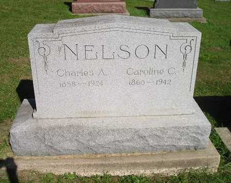 NELSON, CAROLINE C - Bremer County, Iowa | CAROLINE C NELSON