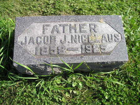 NICOLAUS, JACOB J - Bremer County, Iowa | JACOB J NICOLAUS