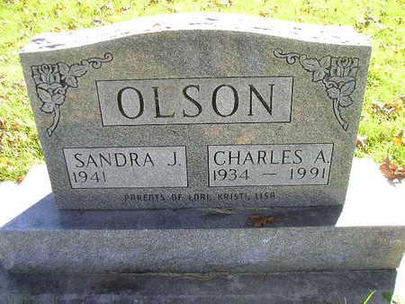 OLSON, CHARLES A - Bremer County, Iowa | CHARLES A OLSON