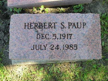 PAUP, HERBERT S - Bremer County, Iowa | HERBERT S PAUP