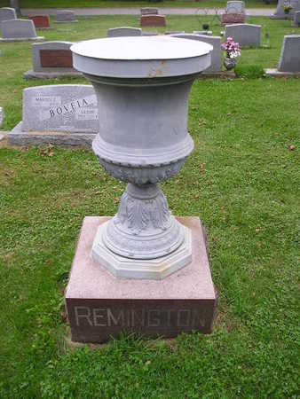 REMINGTON, LEROY - Bremer County, Iowa | LEROY REMINGTON
