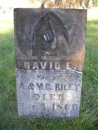RILEY, DAVID E - Bremer County, Iowa | DAVID E RILEY