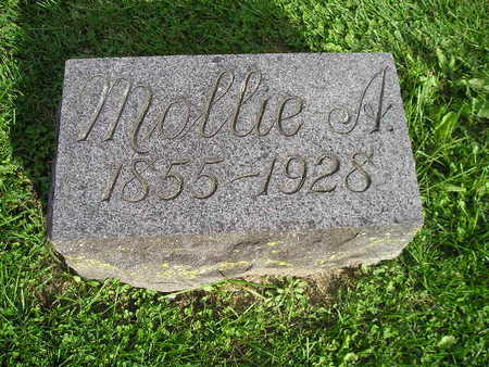 SCHLUTSMEYER, MOLLIE A - Bremer County, Iowa | MOLLIE A SCHLUTSMEYER