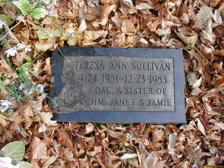 SULLIVAN, TERESA ANN - Bremer County, Iowa | TERESA ANN SULLIVAN