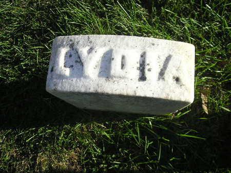 WILCOX, LYDIA - Bremer County, Iowa | LYDIA WILCOX