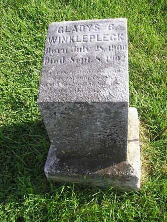 WINKLEPLECK, GLADYS C - Bremer County, Iowa | GLADYS C WINKLEPLECK