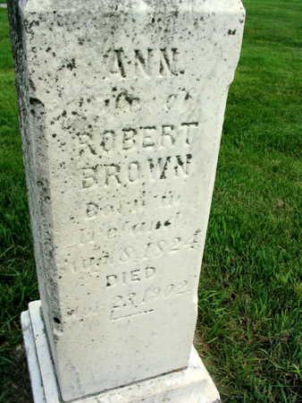 BROWN, ANN - Buchanan County, Iowa | ANN BROWN