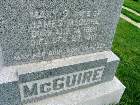 MCGUIRE, JAMES - Buchanan County, Iowa | JAMES MCGUIRE