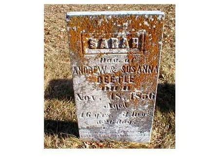 BEETLE, SARAH - Butler County, Iowa | SARAH BEETLE