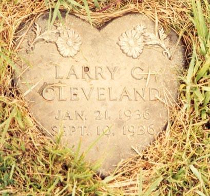 CLEVELAND, LARRY C - Calhoun County, Iowa | LARRY C CLEVELAND