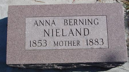 BERNING NIELAND, ANNA - Carroll County, Iowa | ANNA BERNING NIELAND
