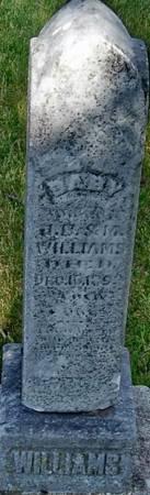 WILLIAMS, BABY - Carroll County, Iowa   BABY WILLIAMS