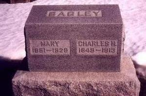 STEBBINS BAGLEY, MARY - Cedar County, Iowa | MARY STEBBINS BAGLEY