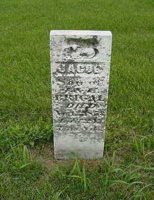 BRIGAL, JACOB - Cedar County, Iowa | JACOB BRIGAL