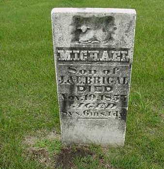 BRIGAL, MICHAEL - Cedar County, Iowa   MICHAEL BRIGAL