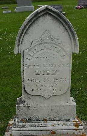 GILLESPIE, ELIZABETH S. - Cedar County, Iowa | ELIZABETH S. GILLESPIE