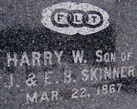 SKINNER, HARRY W. - Cedar County, Iowa | HARRY W. SKINNER
