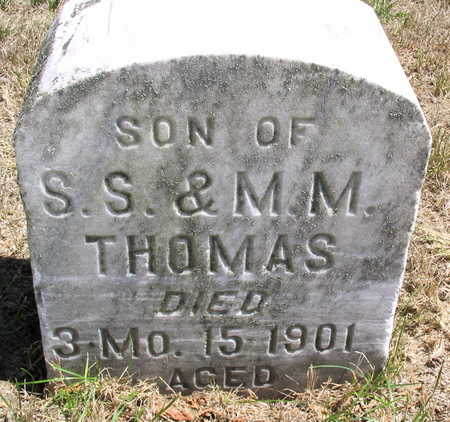 THOMAS, ALBERT J. - Cedar County, Iowa | ALBERT J. THOMAS