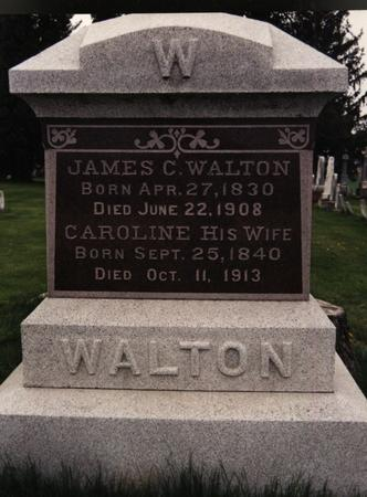 WALTON, JAMES C. - Cedar County, Iowa | JAMES C. WALTON