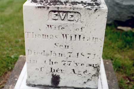 WILLIAMS, EVE - Cedar County, Iowa   EVE WILLIAMS