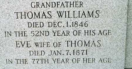 WILLIAMS, THOMAS - Cedar County, Iowa | THOMAS WILLIAMS