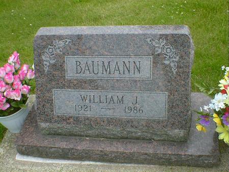 BAUMANN, WILLIAM J. - Cerro Gordo County, Iowa | WILLIAM J. BAUMANN