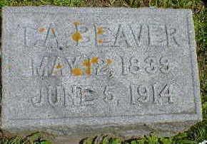 BEAVER, T. A. - Cerro Gordo County, Iowa | T. A. BEAVER