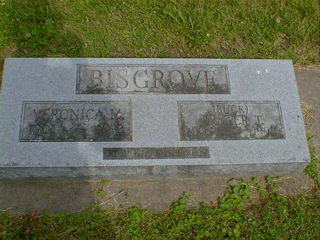 BISGROVE, LESTER T.