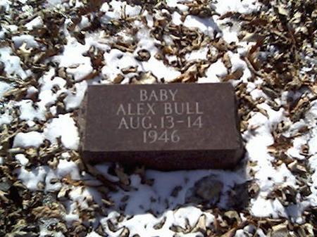 BULL, ALEX - Cerro Gordo County, Iowa | ALEX BULL