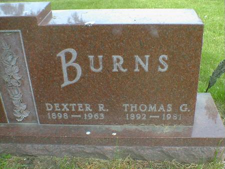 BURNS, DEXTER R. - Cerro Gordo County, Iowa | DEXTER R. BURNS