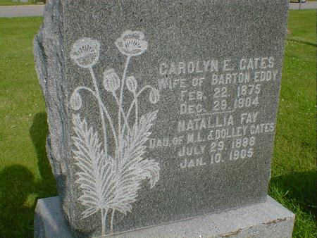 EDDY, CAROLYN E. - Cerro Gordo County, Iowa | CAROLYN E. EDDY