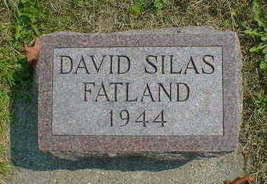 FATLAND, DAVID SILAS - Cerro Gordo County, Iowa | DAVID SILAS FATLAND