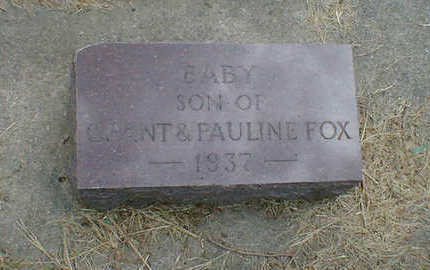 FOX, BABY - Cerro Gordo County, Iowa | BABY FOX