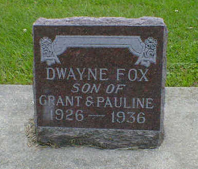 FOX, DWAYNE - Cerro Gordo County, Iowa | DWAYNE FOX